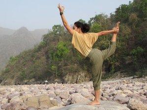 62 Days 500-Hour Yoga Teacher Training in Rishikesh, India