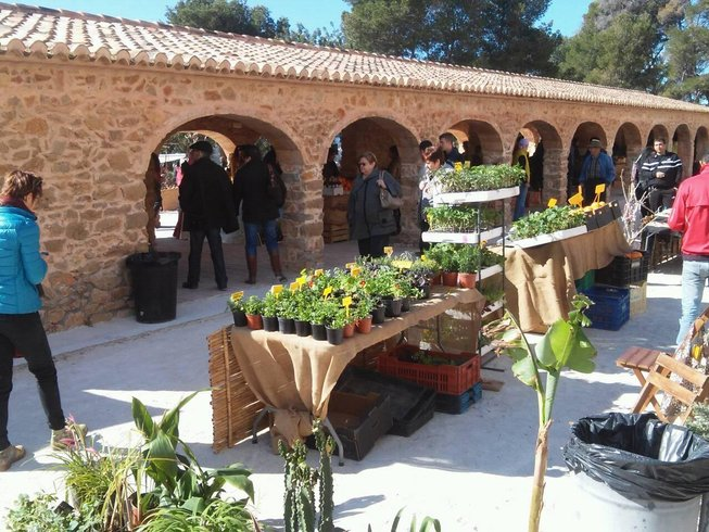 5 Days Vegan Cooking and Yoga Holiday in Spain