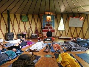 11 Days 125-Hour Yoga Nidra & Restorative Yoga Teacher Training in Golden Bay, New Zealand