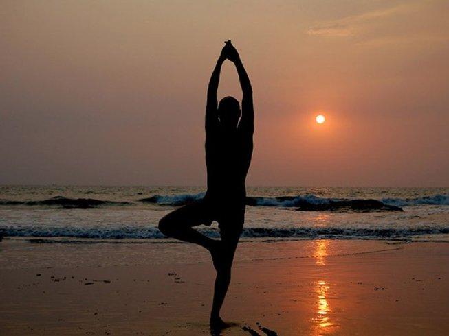 12 jours en stage de yoga, méditation et cure ayurvédique dans le Kérala, Inde