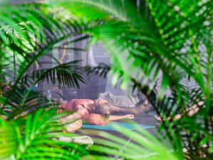 8 Days Innercare Meditation and Yoga Retreat Goa