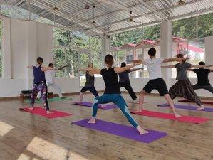 2 Day Wellness and Yoga Retreat in Rishikesh