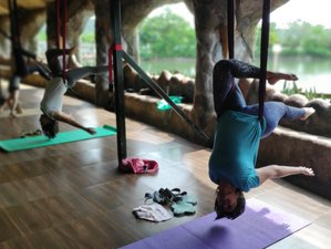 12 Day 100-Hour Aerial Flow Yoga Teacher Training in Arpora, Goa