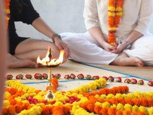 12 Day Awakening The Intelligence Meditation Teacher Training with Mukta Community