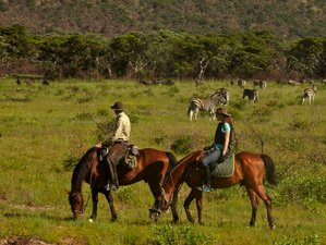 8 Days Big 5 Horseback Safari South Africa