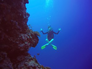 8 Day Yoga and Diving Experience in Maalhos