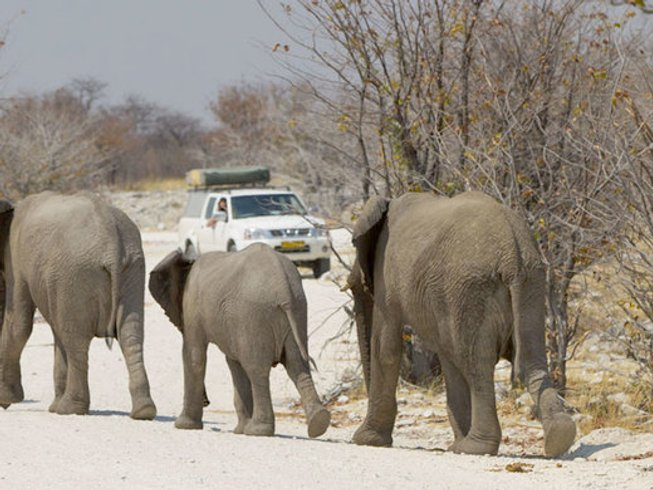 15 Days Self-Drive Safari Honeymoon in Namibia