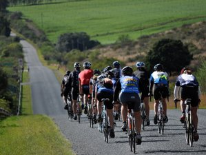 9 Days Road Cycling Holiday on South Africa's Garden Route Ending with the Cape Town Cycle Tour