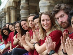 30-Daagse 300-urige Ashtanga Yoga Docentenopleiding in India