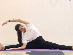15 Day 100-Hour Online Yoga Teacher Training