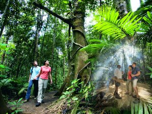 2 Day Cape Tribulation Wildlife Tour with Guided Rainforest Night Walk in Queensland, Australia