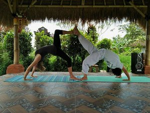 6 Day Yoga, Meditation, and Balinese Culture Retreat in Tabanan, Bali