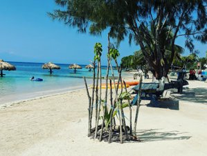 7 Days Ocean Healing Yoga Retreat: Calming the Mind in Roatan, Honduras