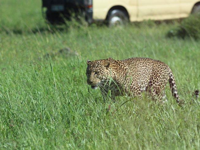 4 Days Maasai Mara Safari in Kenya