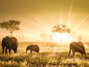 7 Days – Wildlife & Culture   Lodge Safari