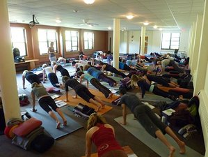 7 Days Silent Summer Yoga Retreat in New York