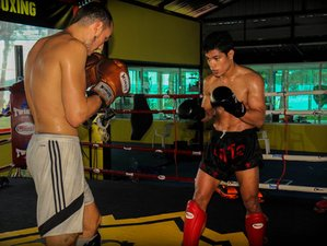 3 Days Private Muay Thai Training Thailand