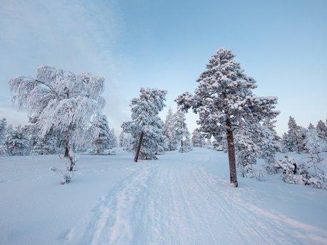 Sirkka, Lapland