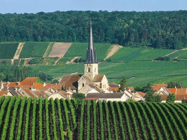 2 Days Dreamy Champagne Tour in France