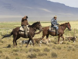 5 Days Adventurous Horse Riding Holiday in Patagonia, Chile