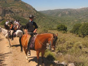 8 Day Panorama Rides Stationary Horse Riding Holiday in Crete