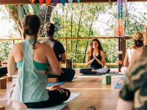 21 Day 200hr Yoga Alliance YTT at Vida Asana in Playa Hermosa