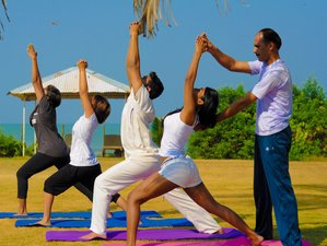 Dual Certifications 21 Days 200-Hour Vinyasa Yoga Teacher Training in Goa, India