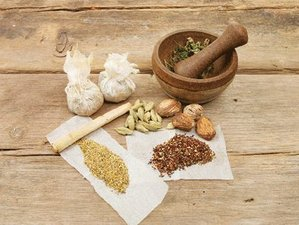 7 Day Detox and Wellness Retreat According to the Ancient Medical Science of Himalayas in Namur