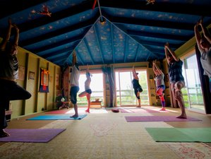 7 Days Sacred Natural Sanctuary Meditation and Yoga Retreat in Hawaii, USA