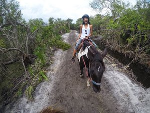 4 Days Working Ranch and Wildlife Rescue Adventure in Merritt Island, Florida