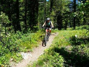 5 Days Beginner Mountain Bike Tour in Idaho, USA
