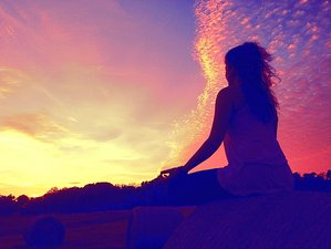 6 Days Wellness Yoga Holiday in Florida
