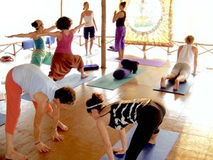 27 Day Intensive 200-Hour Ashtanga and Hatha Yoga Teacher Training in Tangalle, Southern Province