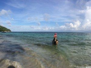 7 días de retiro de yoga y aventura en la isla de Providencia, Colombia