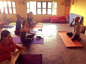 28 Days 200 Hours Yoga Teacher Training in Dharamsala