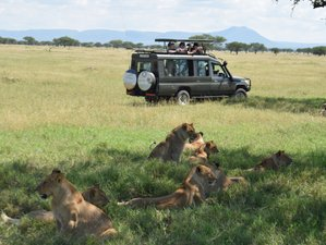 Authentic 8 Days Cultural and Wildlife Safaris in Northern Circuit