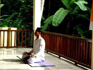 "6 Days ""Escape the World"" Yoga Retreat in Ubud, Bali"