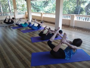 8-Daagse Detox, Meditatie en Yoga Retreat in de Himalaya's, India