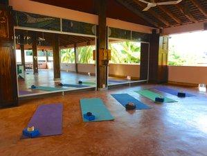 4 Days Healing Transformative Retreat in Oaxaca