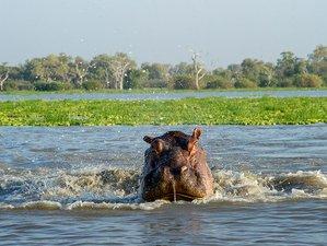 3 Days Budget Safari in Selous Game Reserve, Tanzania