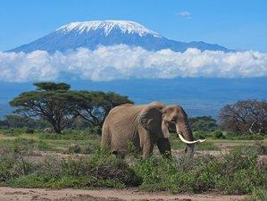 4 Days Tsavo East National Park, Tsavo West and Amboseli.
