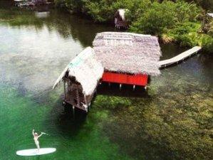 8 Day Get Off the Grid Private Island Yoga Retreat in Paradise in Boca del Toro, Panama