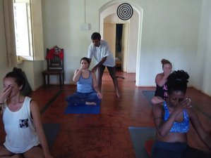 25 Days 200-Hour Detox Yoga Teacher Training India