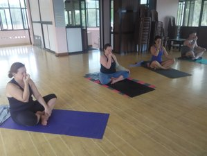 30 Days Wellbeing and Weight Loss Yoga Retreat in Himachal Pradesh, India