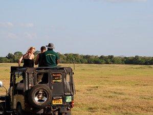 10 Days Unique Safari in Sri Lanka