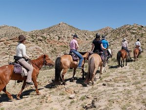 11 Day East Gobi Point to Point Tour for Advanced Riders in Mongolia