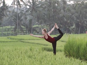 21 Day 200-Hour Vinyasa Yoga Teacher Training in Canggu, Bali, Indonesia