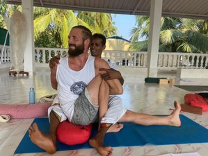 26 Day 200-Hour Multi-style Yoga Teacher Training in Goa, India