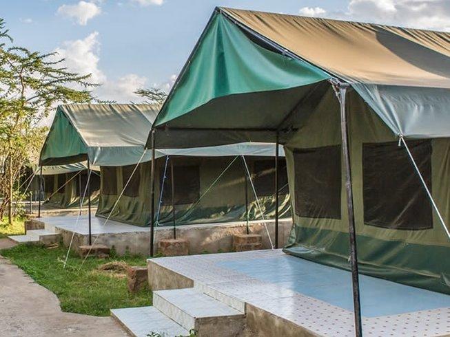 3 Days Big Five Kenya Safari to Maasai Mara National Park
