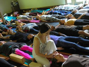 8 Days Jivamukti Yoga Retreat New York, USA